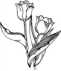 Tulips black and white clipart png royalty free library Free Free Tulip Cliparts, Download Free Clip Art, Free Clip Art on ... png royalty free library