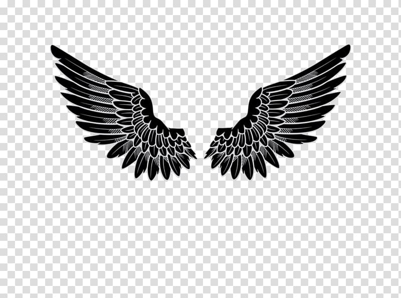 Black wings clipart banner freeuse Black wings sticker, Logo Angel, wings transparent background PNG ... banner freeuse