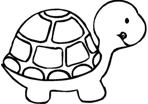 Blackline clipart turtle transparent library 13+ Turtle Clipart Black And White | ClipartLook transparent library