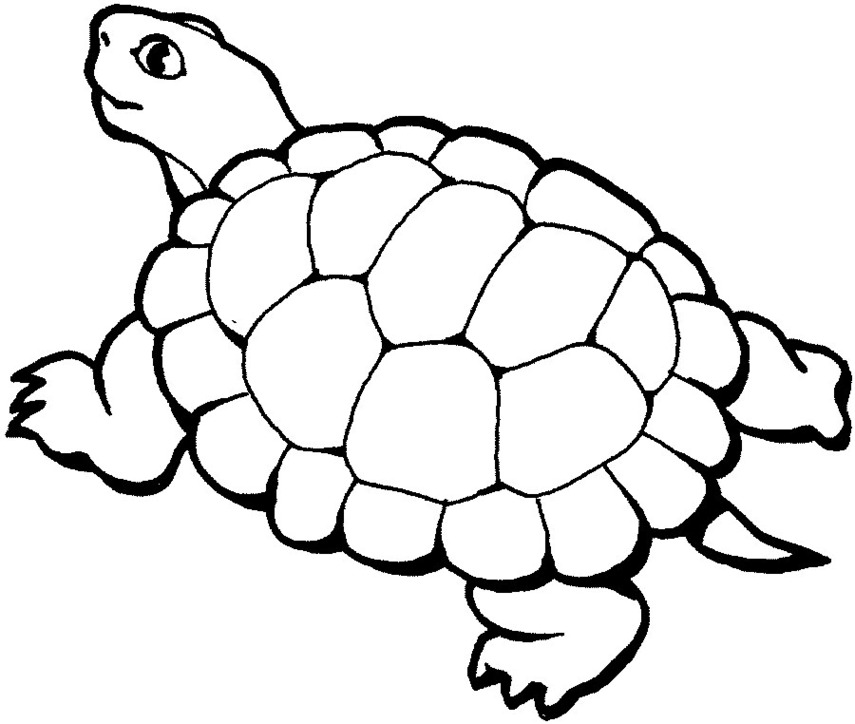 Blackline clipart turtle stock Free Turtle Clipart Black And White, Download Free Clip Art, Free ... stock