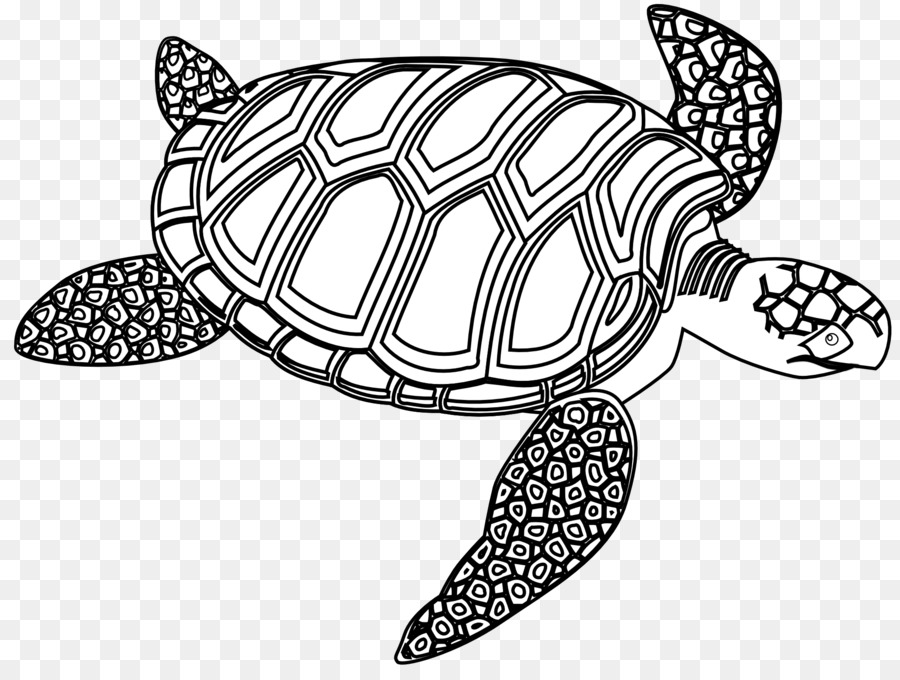Blackline clipart turtle graphic royalty free stock Black Line Background clipart - Turtle, Drawing, Design, transparent ... graphic royalty free stock