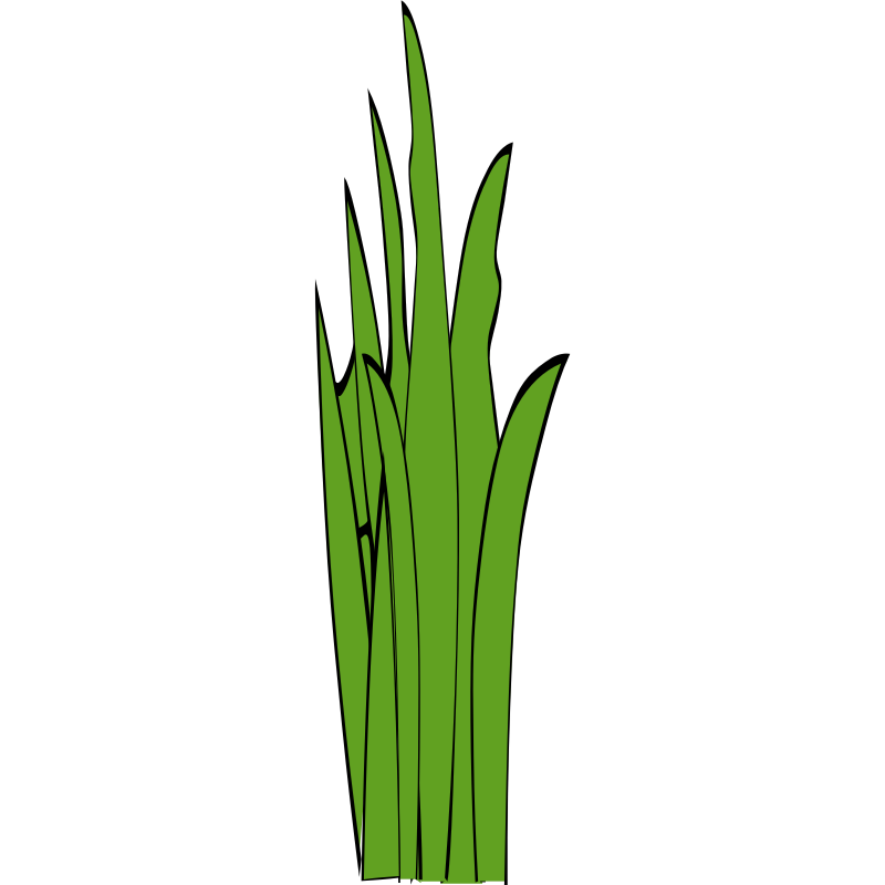 Blades of grass clipart black and white Free Blade Of Grass Png, Download Free Clip Art, Free Clip Art on ... black and white