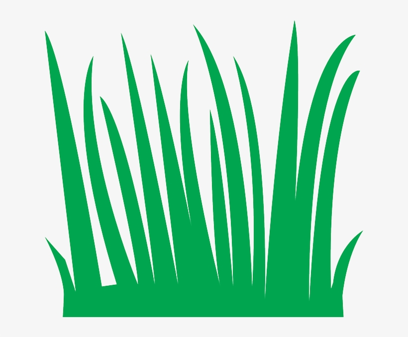 Grass blades clipart graphic freeuse stock Sea Grass Clipart Tall - Grass Blades Cartoon - Free Transparent PNG ... graphic freeuse stock