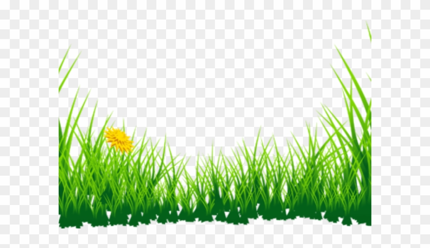 Blades of grass clipart transparent image black and white download Grass Clipart Boarder - Green Grass Clipart Png Transparent Png ... image black and white download