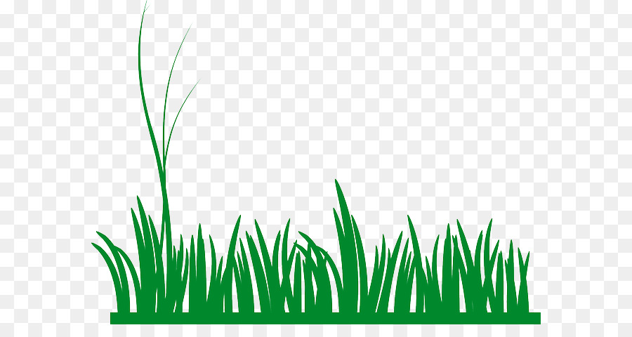 Blades of grass clipart transparent vector freeuse stock Family Tree Drawing png download - 640*462 - Free Transparent Lawn ... vector freeuse stock