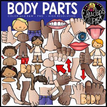 Blank body parts clipart clip Body Parts Clip Art Bundle {Educlips Clipart} clip