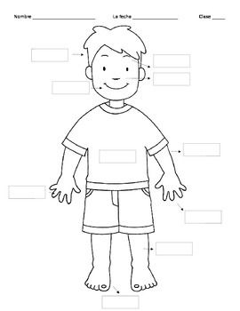 Blank body parts clipart graphic free library Spanish 1 Para Empezar Body Parts | body | Body parts in spanish ... graphic free library