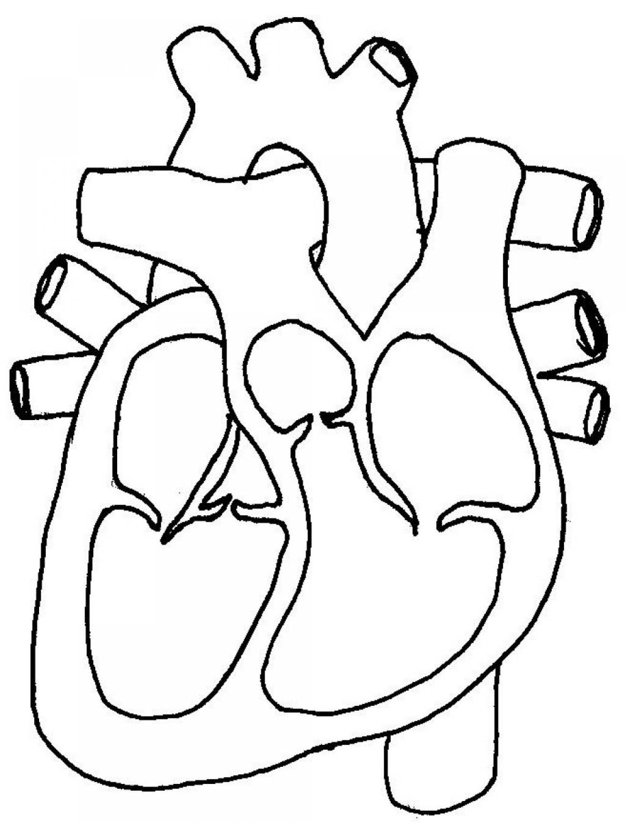 Blank label human heart clipart black and white clip art free download Heart Diagram Blank - Wiring Diagrams Dock clip art free download