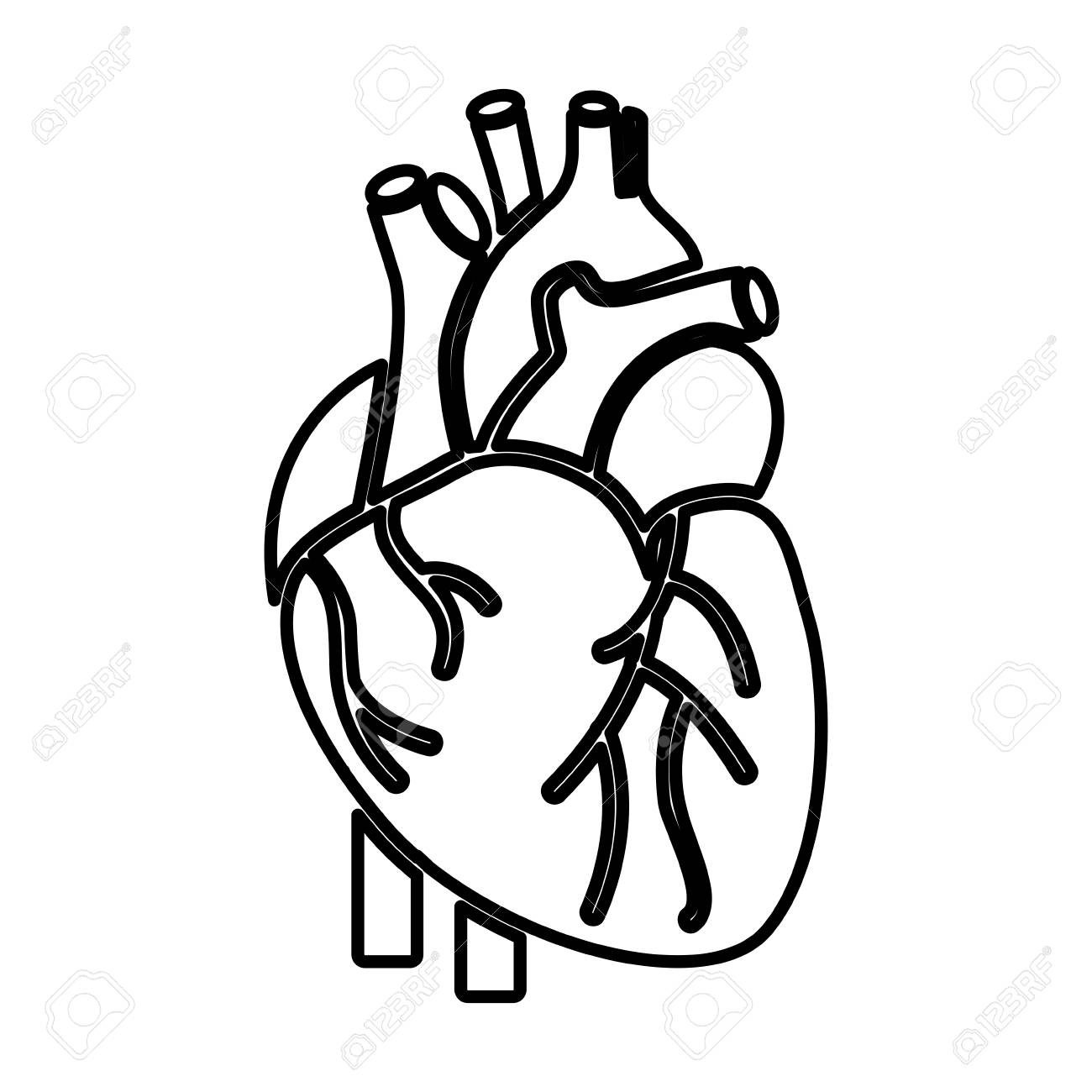 Blank label human heart clipart black and white clipart stock Human Heart Clipart Black And White | Free download best Human Heart ... clipart stock