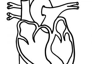 Blank label human heart clipart black and white jpg library Heart Diagram Blank - Wiring Diagrams Dock jpg library