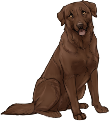Blbrownck lab clipart jpg royalty free Chocolate labrador pictures clipart images gallery for free download ... jpg royalty free