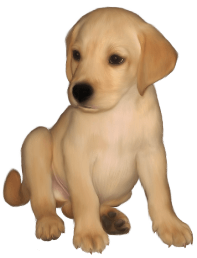 Blind dog clipart banner free stock Lab Dog Clipart at GetDrawings.com   Free for personal use Lab Dog ... banner free stock