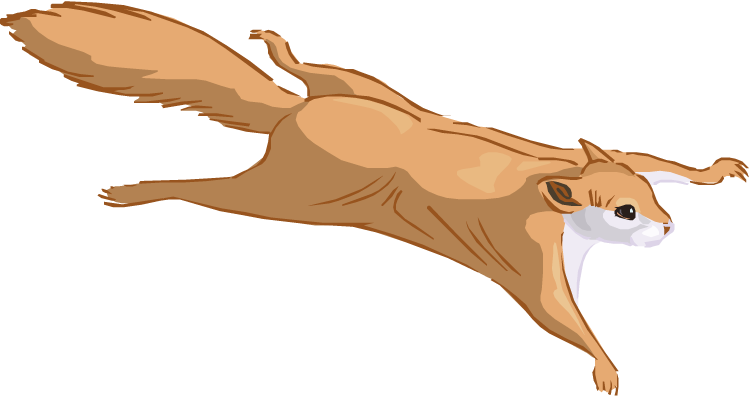 Blind squirrel clipart royalty free stock Squirrel Clip Art - ClipartAndScrap royalty free stock