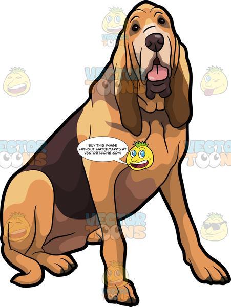 Bloodhound dof clipart jpg black and white stock A Friendly Bloodhound Pet Dog jpg black and white stock