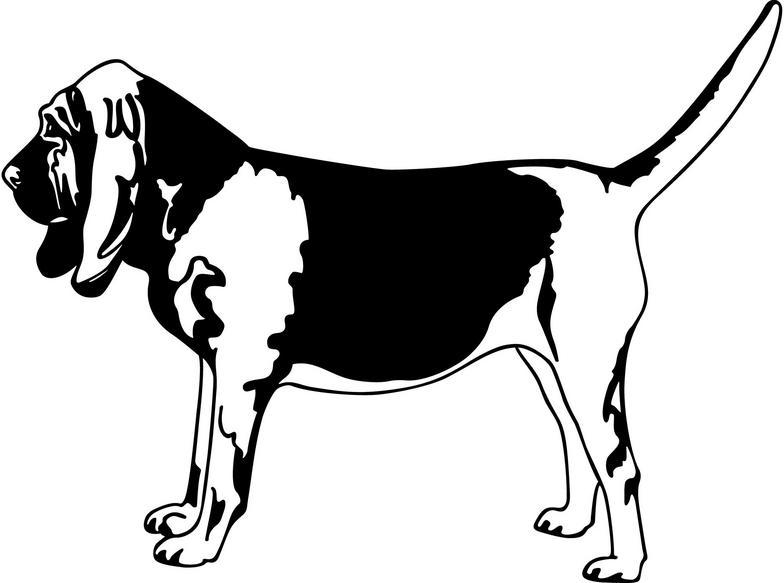 Bloodhound dof clipart jpg transparent download Bloodhound Cliparts - Cliparts Zone jpg transparent download