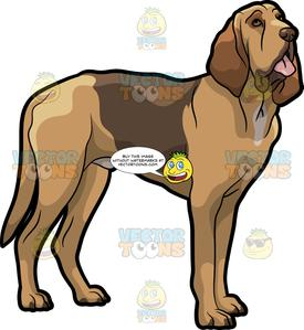 Bloodhound dof clipart svg black and white stock A Bloodhound Pet Dog svg black and white stock