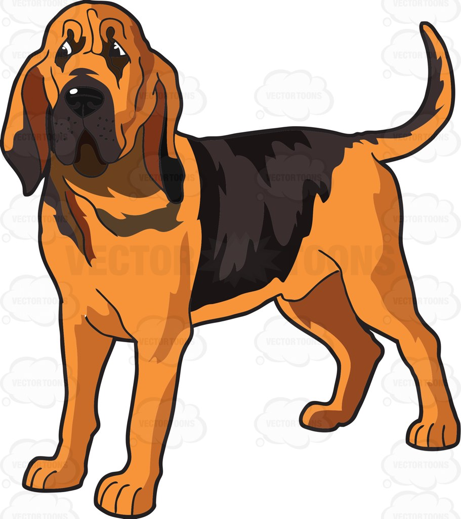 Bloodhound dof clipart picture free Bloodhound Clipart | Free download best Bloodhound Clipart on ... picture free