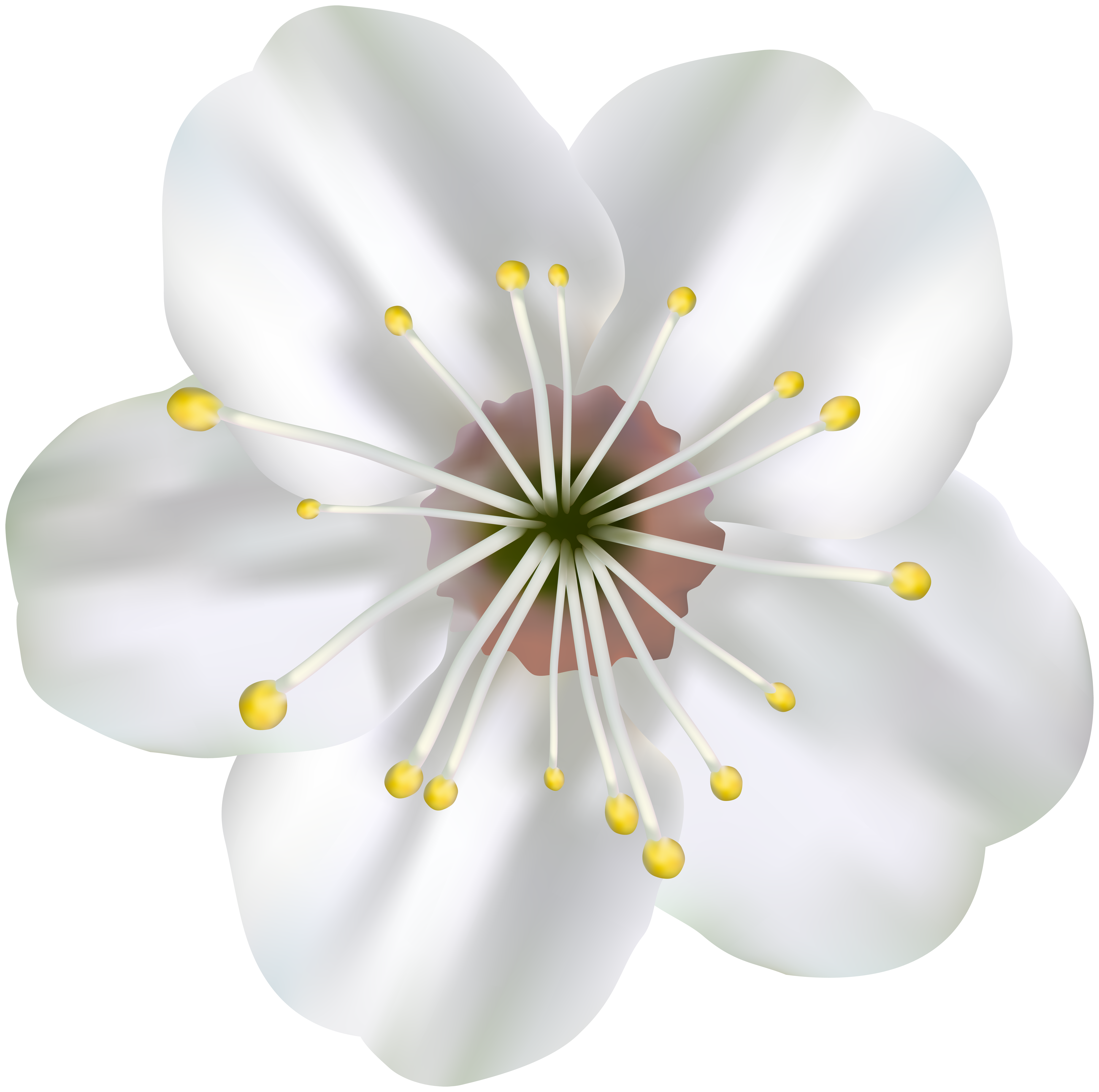 Blooming flower clipart free library Spring Blooming Flower PNG Clip Art Image | Gallery Yopriceville ... free library