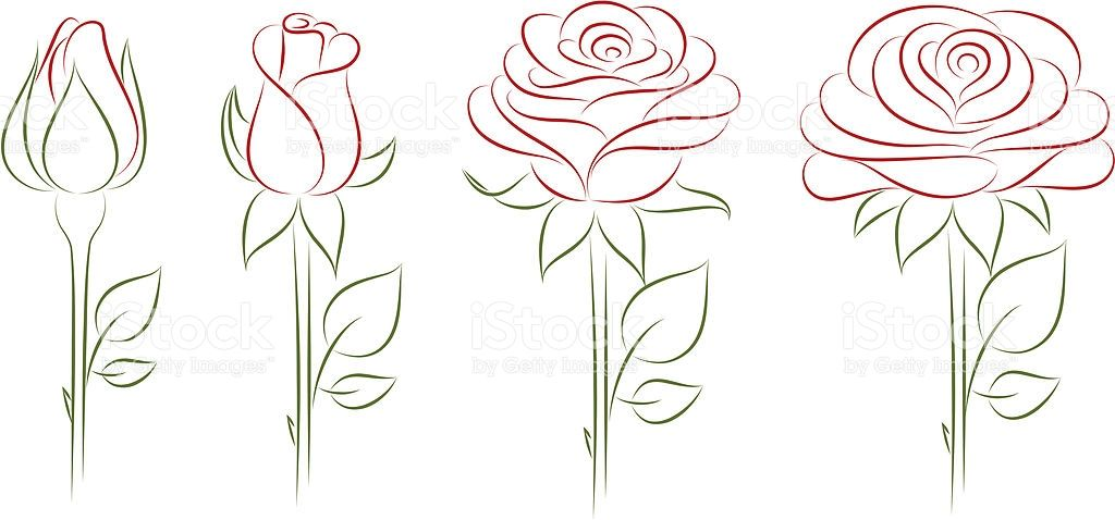 Blooming rose clipart vector royalty free stock Blooming Rose. Vector illustration. | Paintings in 2019 | Rose ... vector royalty free stock