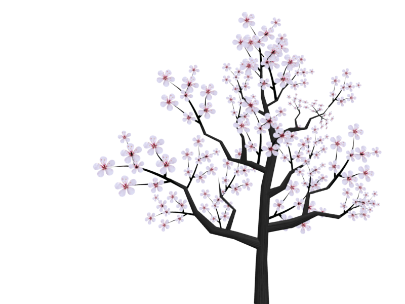 Cherry Blossom Drawing Tumblr at GetDrawings.com | Free for personal ... clipart transparent stock