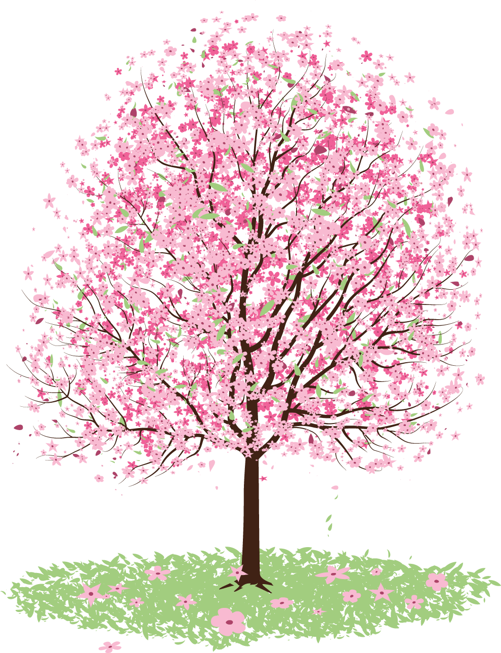 Blossom tree clipart clip black and white Cherry blossom Tree Clip art - sakura 990*1289 transprent Png Free ... clip black and white
