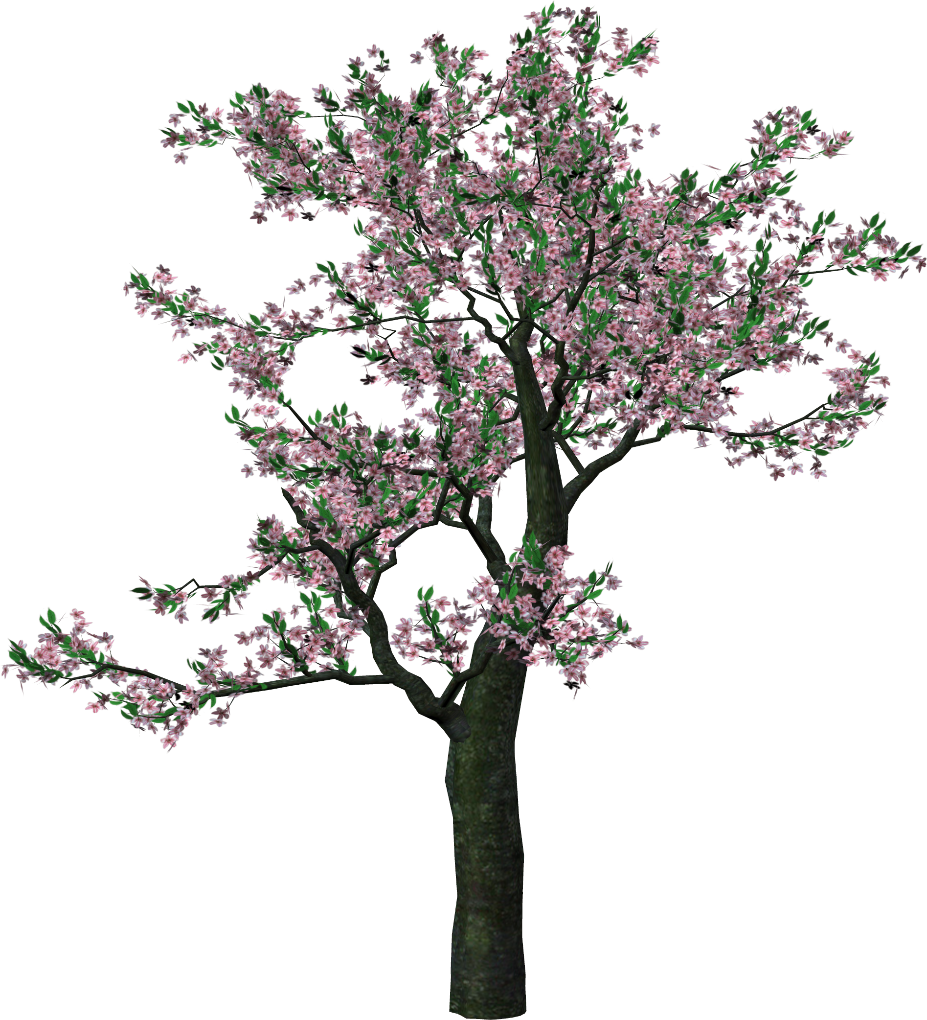 Tree in spring clipart clip art transparent Large Spring Tree Clipart | Gallery Yopriceville - High-Quality ... clip art transparent