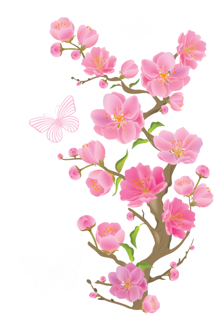 Spring Cherry Blossoms with Butterflies PNG Clipart Picture ... banner transparent download