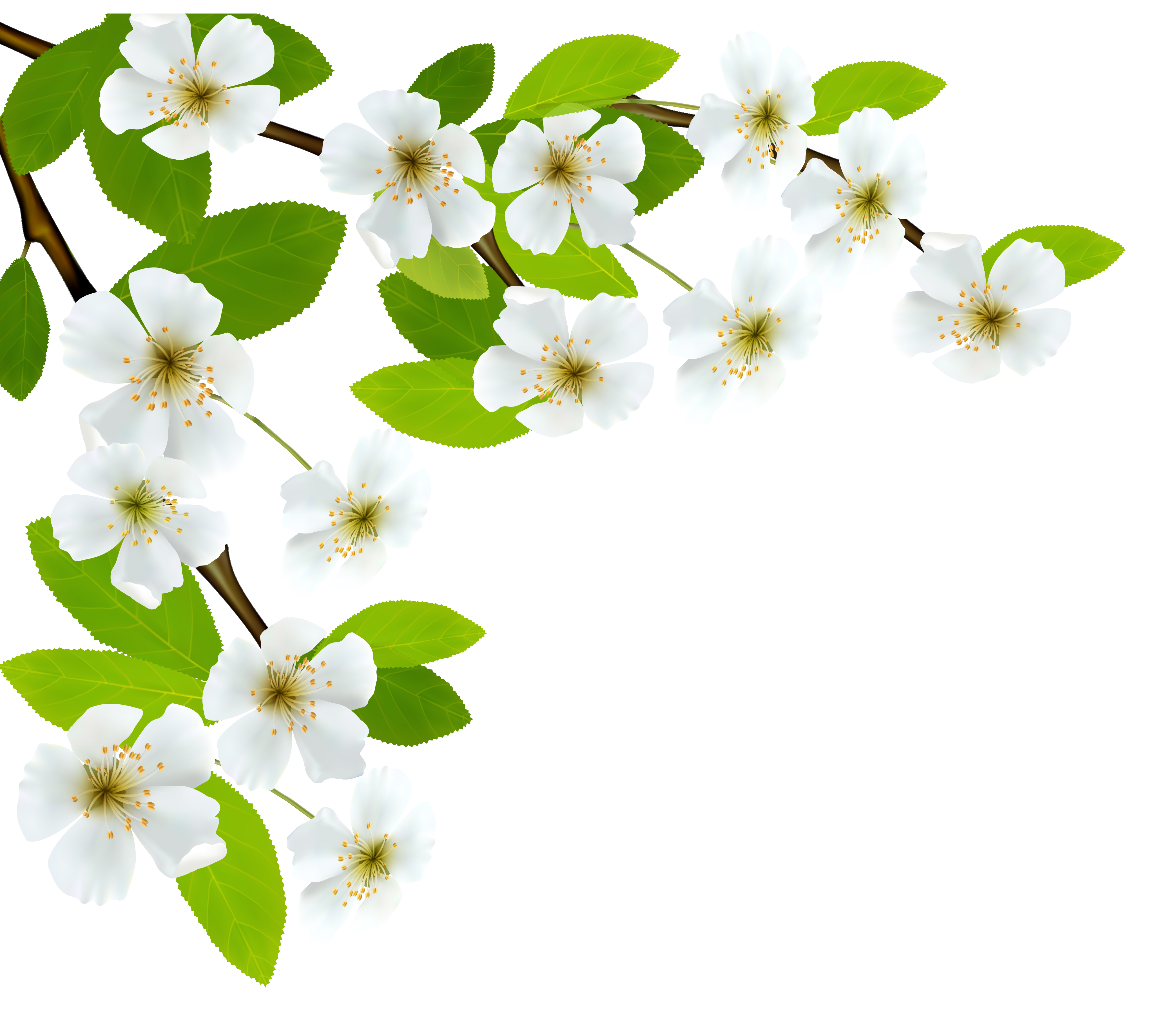 Springtime with cross clipart image black and white download White Spring Branch PNG Clipart Image | leaves & branches ... image black and white download