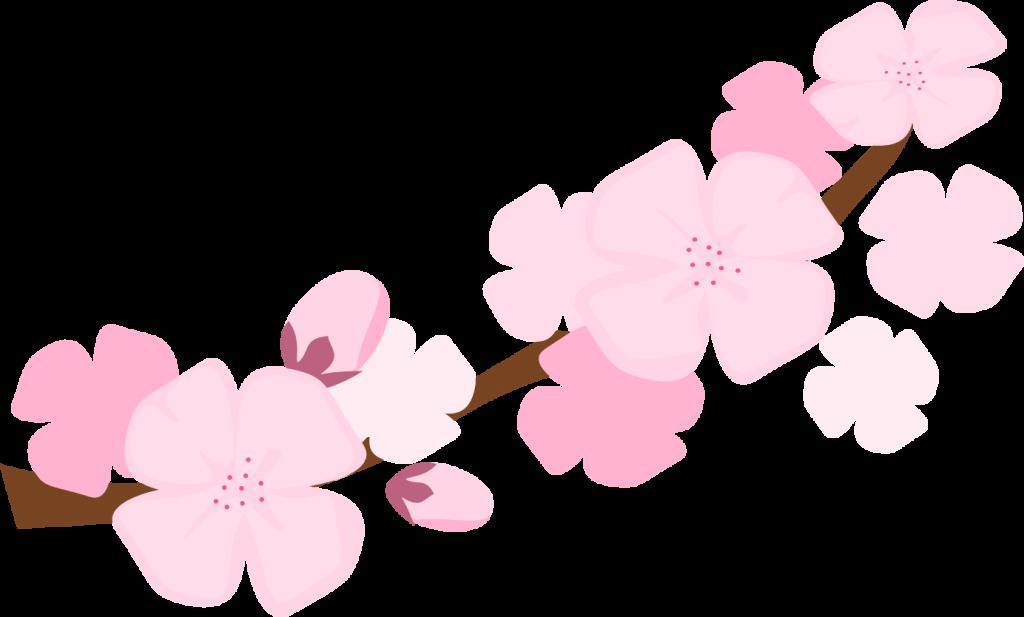 Sakura flower clipart graphic transparent library Sakura Clipart at GetDrawings.com | Free for personal use Sakura ... graphic transparent library