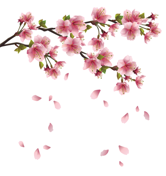 Blush pink flower clipart svg library Beautiful Pink Spring Branch with Falling Petals PNG Clipart | print ... svg library