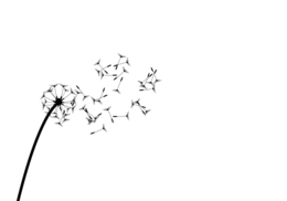 Blowing away clipart graphic freeuse stock Download dandelion blowing away png clipart Dandelion Clip art graphic freeuse stock