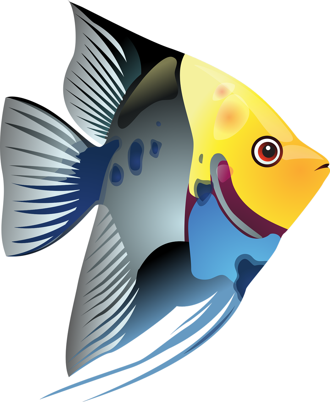 Simple Fish Drawing at GetDrawings.com | Free for personal use ... svg library library