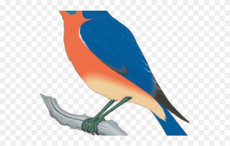 Clipart blue bird graphic royalty free library Free Bluebird Clipart - Blue Bird Clip Art - Png Download (#880832 ... graphic royalty free library