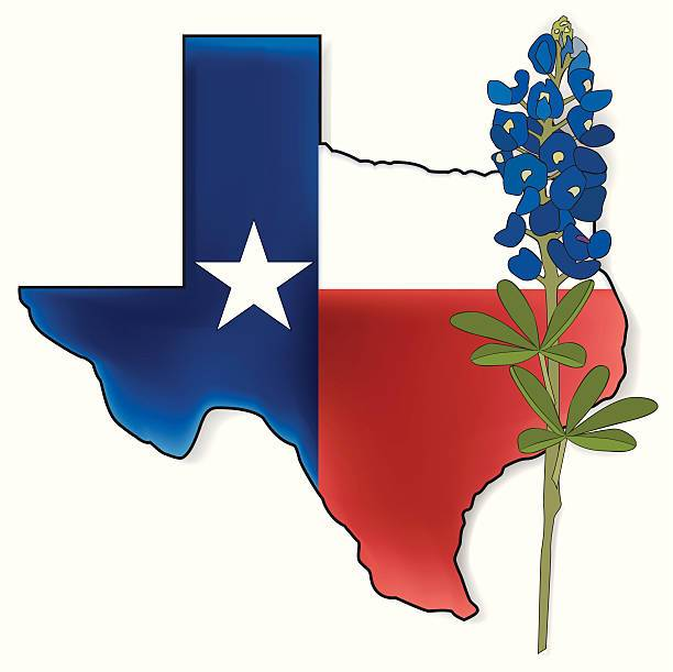 Blue bonnet clipart banner free library Texas bluebonnet clipart 5 » Clipart Portal banner free library
