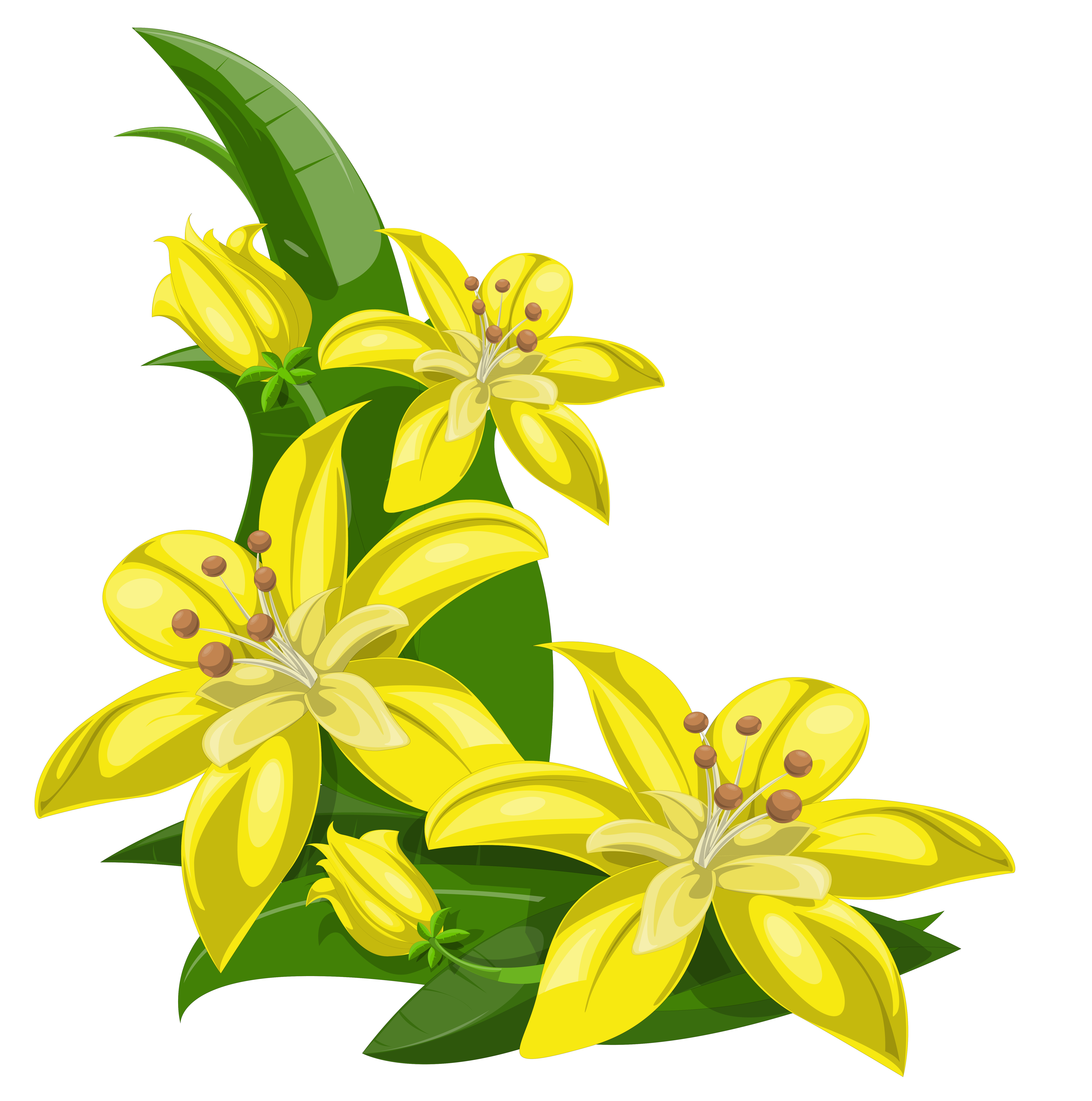 Lily Flowers Clipart at GetDrawings.com | Free for personal use Lily ... clip royalty free download