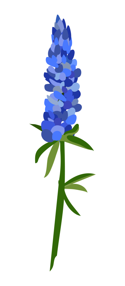 Bluebonnet Clipart at GetDrawings.com | Free for personal use ... transparent