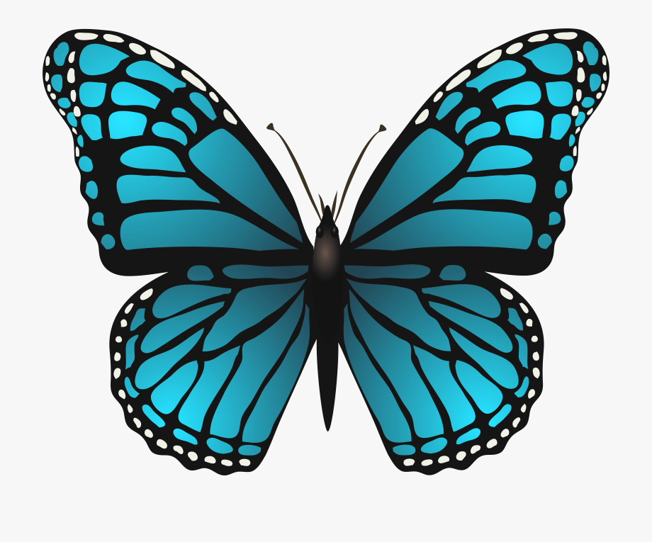 Clipart blue butterfly royalty free download Butterflies Png Transparent - Blue Butterfly Clip Art #215572 - Free ... royalty free download