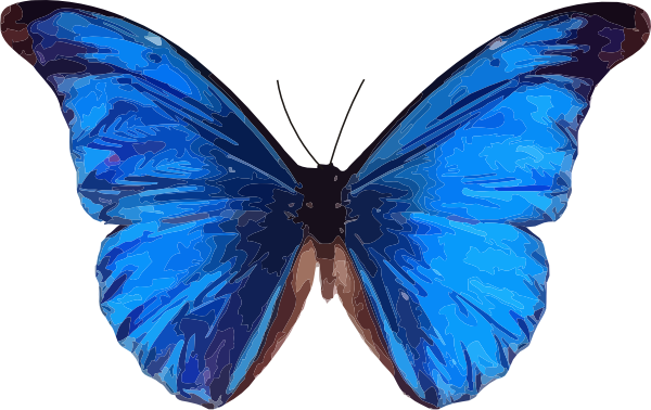 Blue butterfly images clipart jpg free library Free Blue Butterfly, Download Free Clip Art, Free Clip Art on ... jpg free library