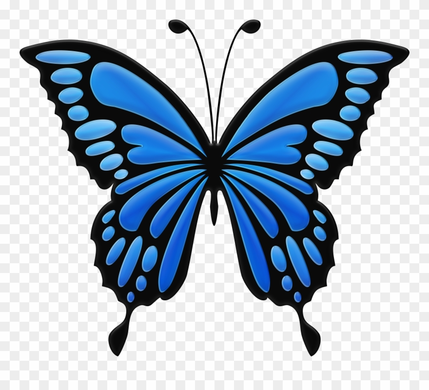 Blue butterfly images clipart png black and white stock Download Blue Butterfly Clipart Png Photo Transparent Png (#2432319 ... png black and white stock