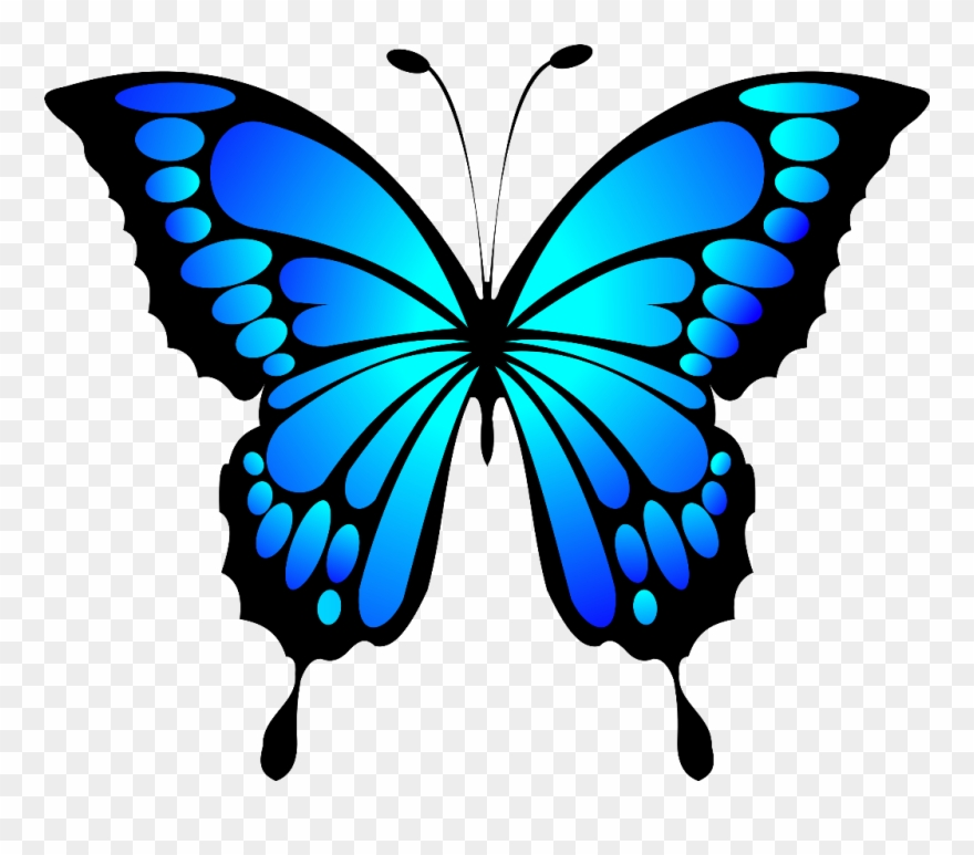 Clipart blue butterfly clipart black and white Butterfly Insect Blue Morpho - Blue Butterfly Clipart (#458574 ... clipart black and white