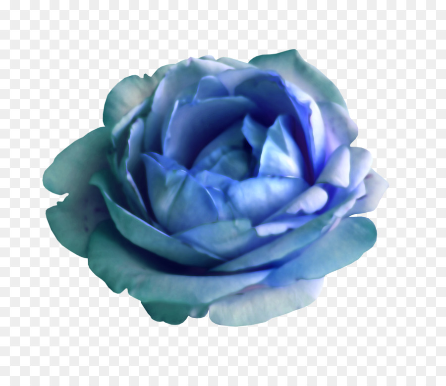 Blue cabbage rose clipart clip art transparent library Flowers Clipart Background png download - 800*771 - Free Transparent ... clip art transparent library