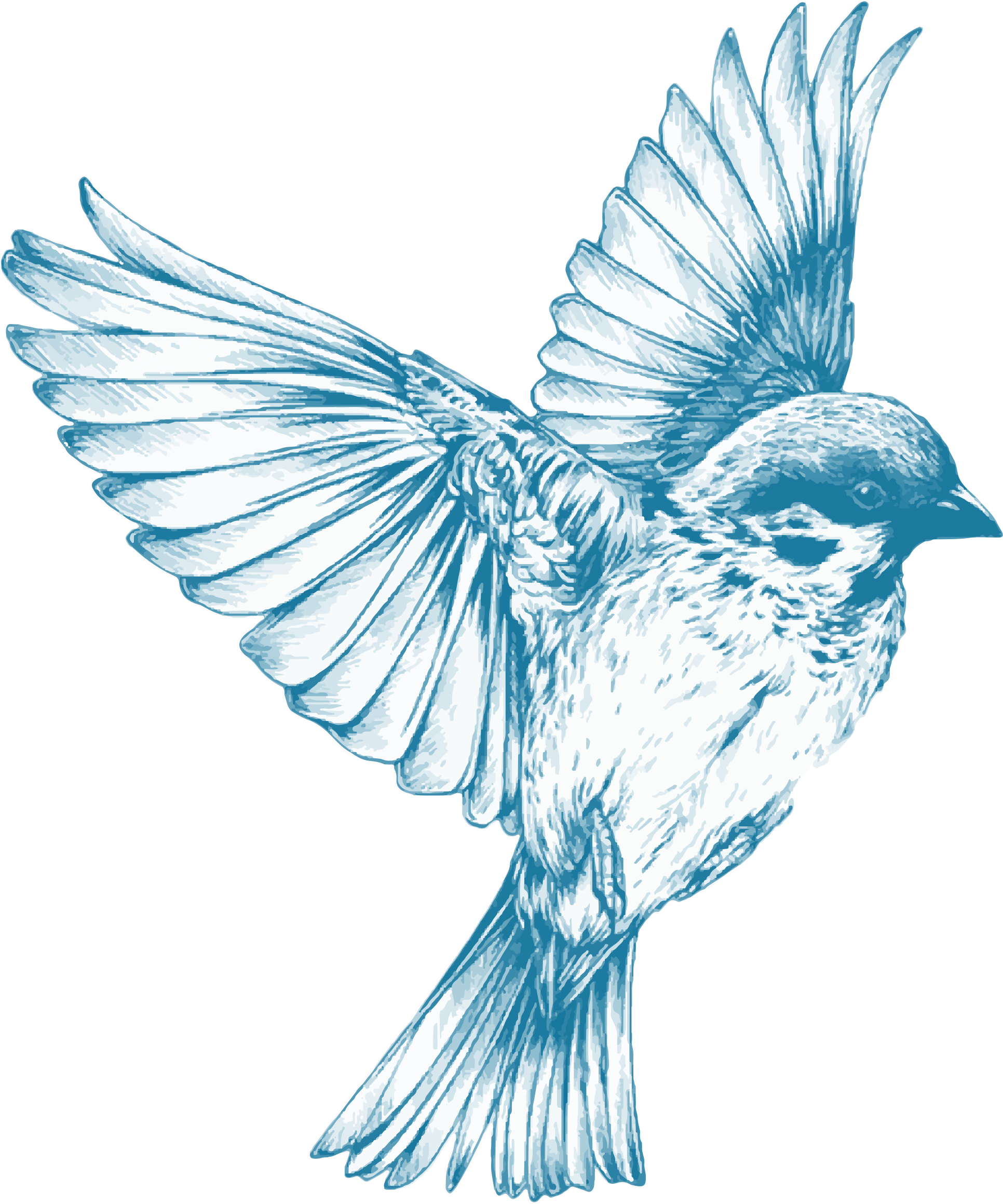 Blue dove with sun clipart banner black and white library Vintage Blue Bird by GDJ this is for my girl Feven , may all your ... banner black and white library