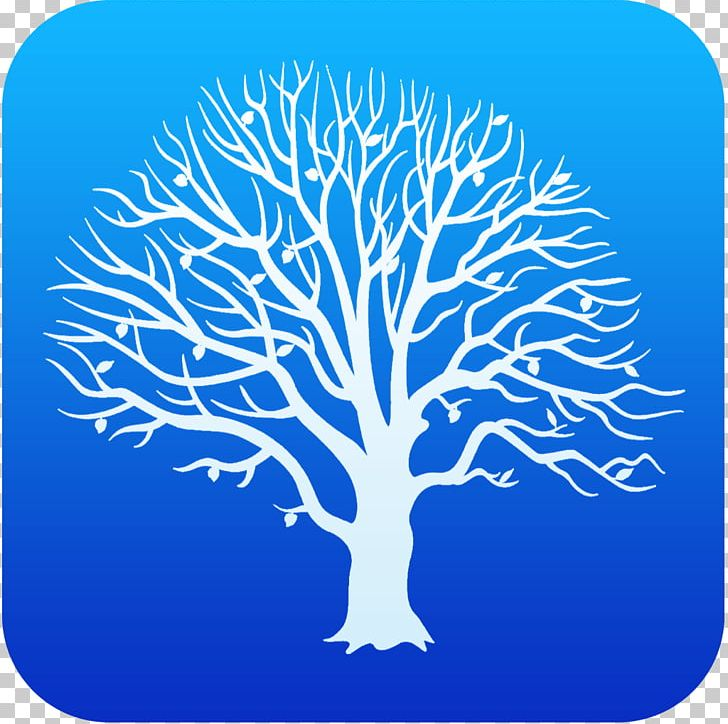 Blue family tree clipart vector library stock Ohio Genealogy MacFamilyTree Family Tree Family History Society PNG ... vector library stock