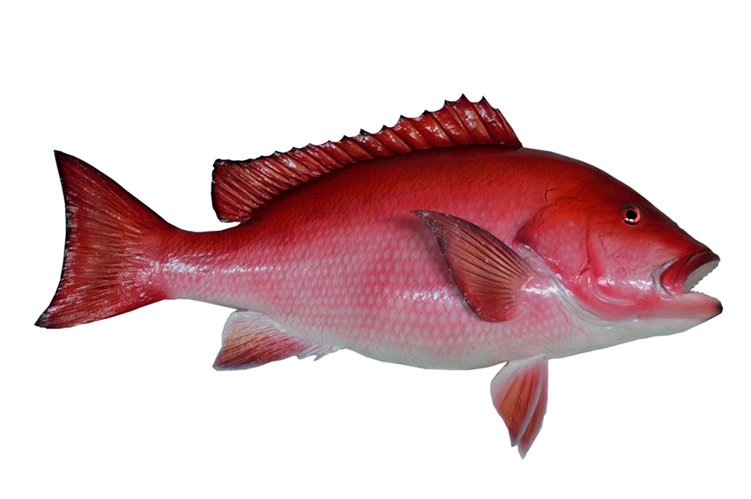 Blue fish red fish clipart picture free library Fish Clip Art picture free library
