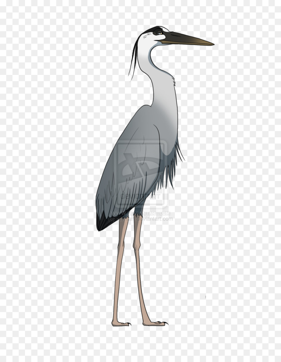 Blue heron pictures clipart picture stock Crane Bird clipart - Bird, Drawing, Stork, transparent clip art picture stock