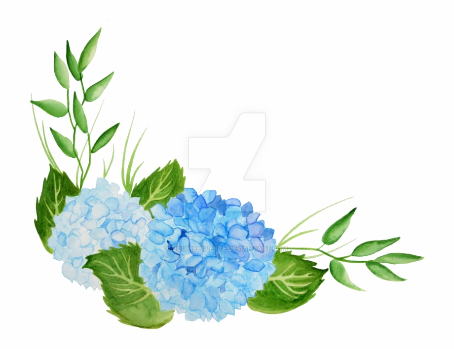 Blue hydrangea clipart free