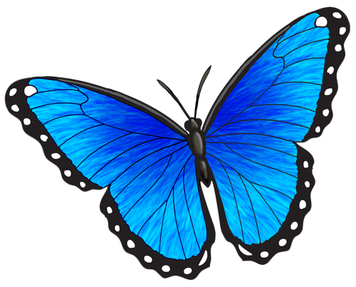 Blue morpho butterfly clipart black and white banner black and white Animals For > Blue Morpho Butterfly Tattoo | tattoos i want | Morpho ... banner black and white