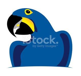 Blue parrot clipart banner stock Blue Parrot premium clipart - ClipartLogo.com banner stock
