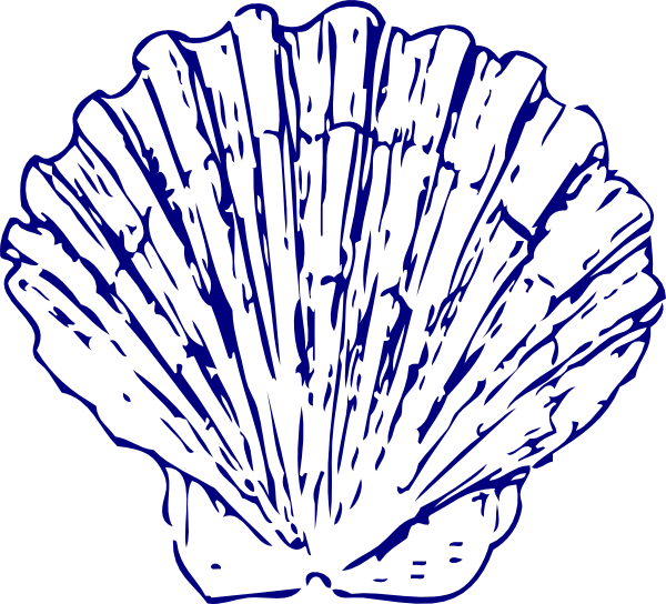 Blue seashell clipart