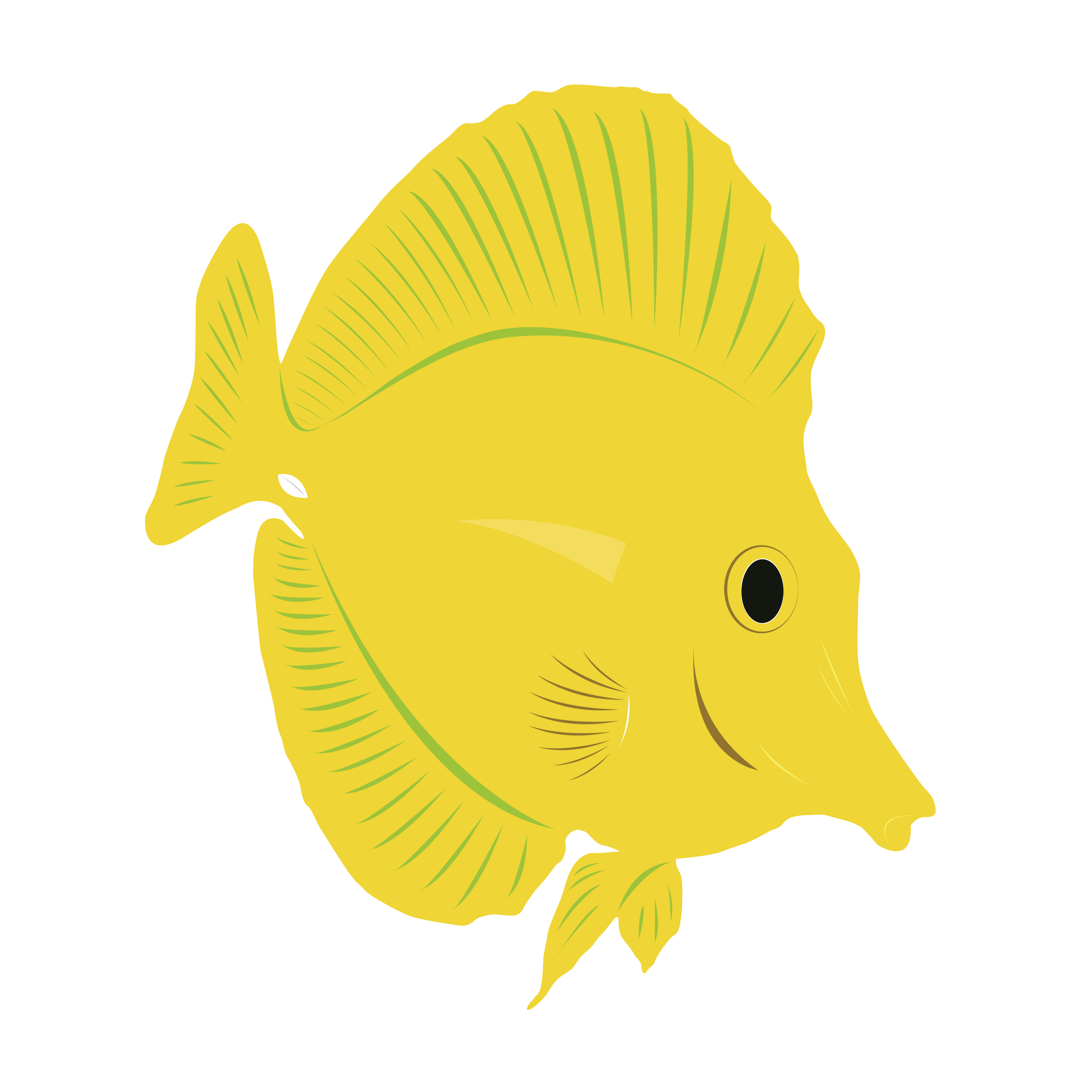 Blue tang fish clipart outline vector black and white download Yellow Tang Drawing at GetDrawings.com | Free for personal use ... vector black and white download